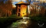 Borea's Home